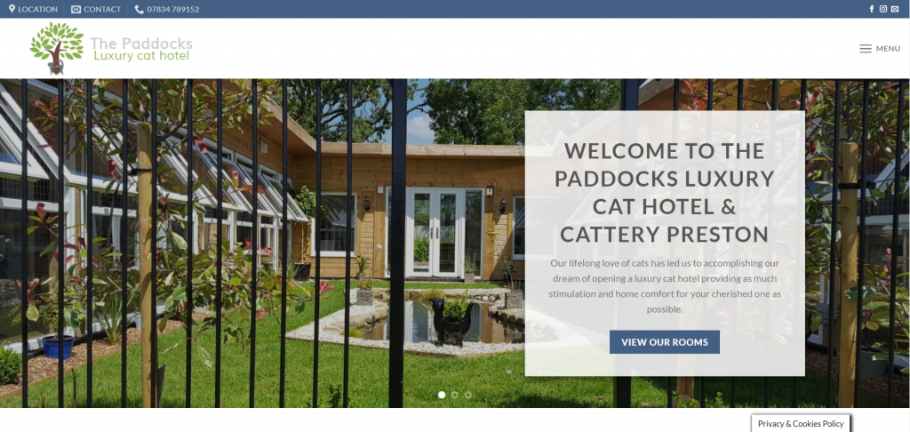 a screenshot of the home page of the paddocks luxury cat hotel